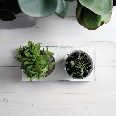 DIY Chrome & Concrete Planter