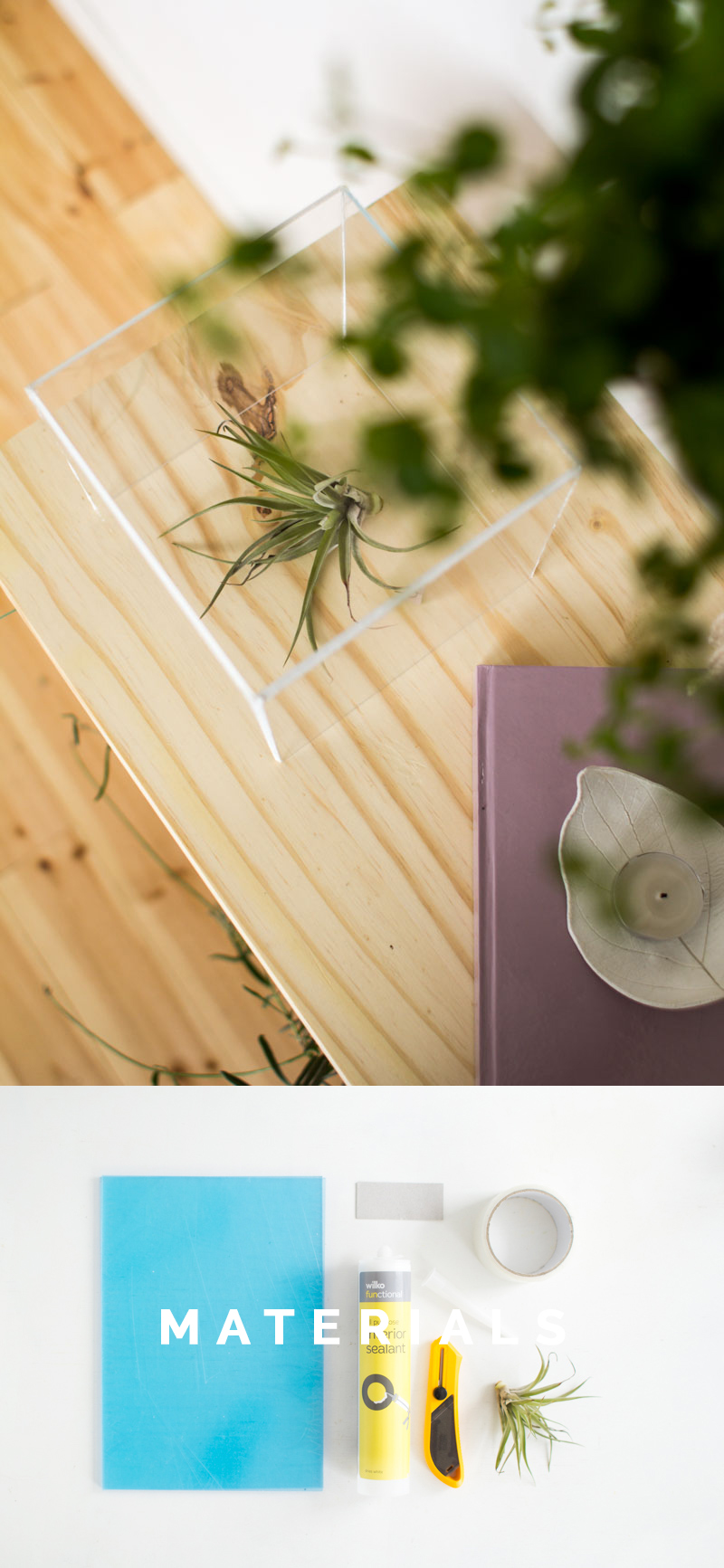 Fall For DIY | Air plant display box materials