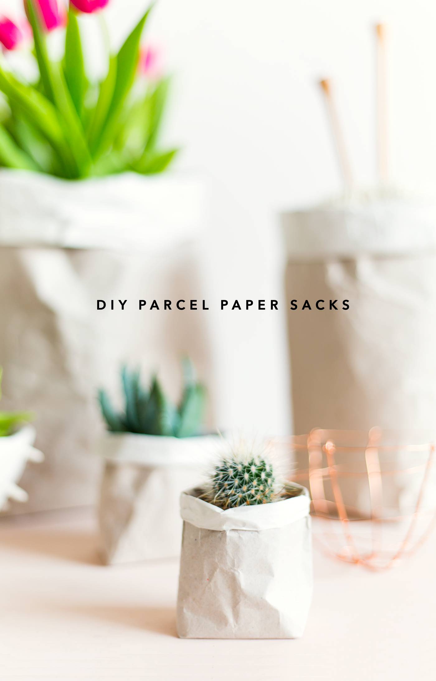 Diy packing paper sack planters vases fall for diy diy packing paper sack planters vases floridaeventfo Gallery