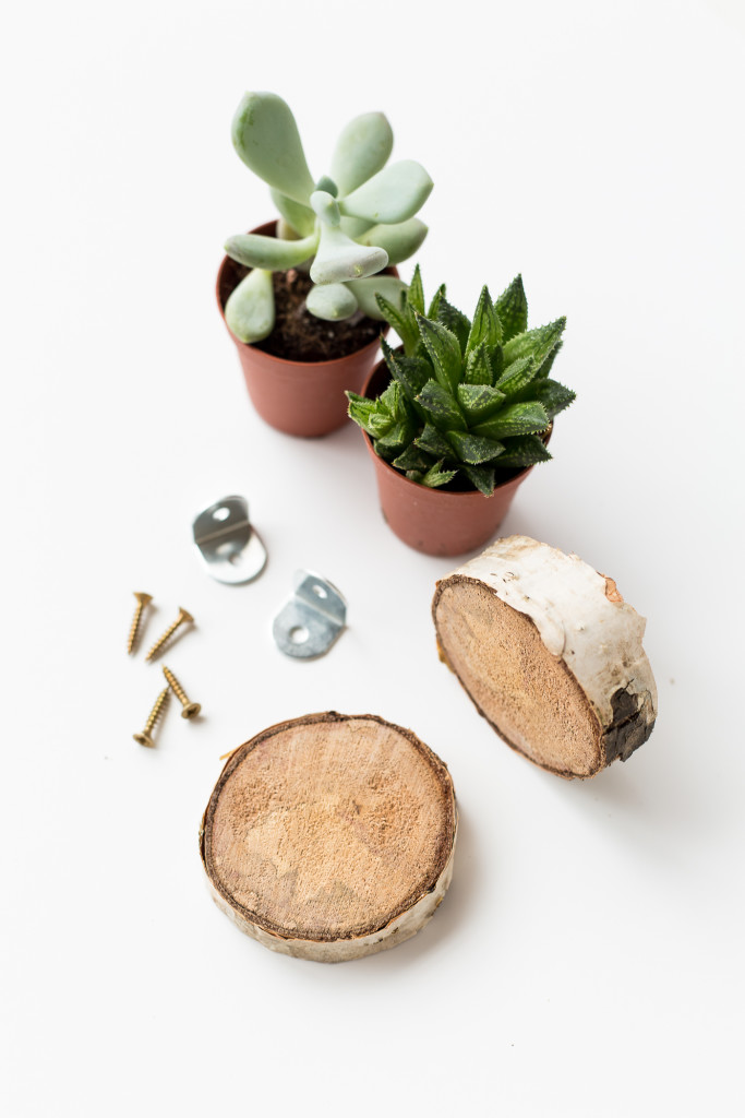Birch Slice Floating Plant Shelves Materials | @fallfordiy-1