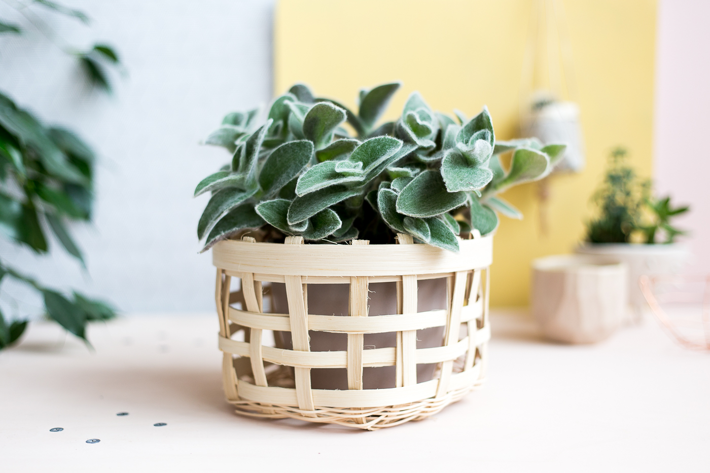How To Weave A Cat Basket : How to weave a basket planter fall for diy lovin