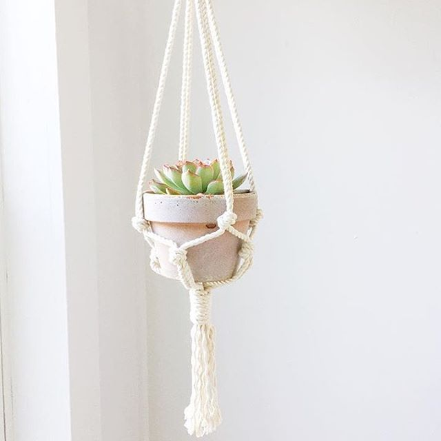 Macrame Inspiration - Rope & Root | @fallfordiy