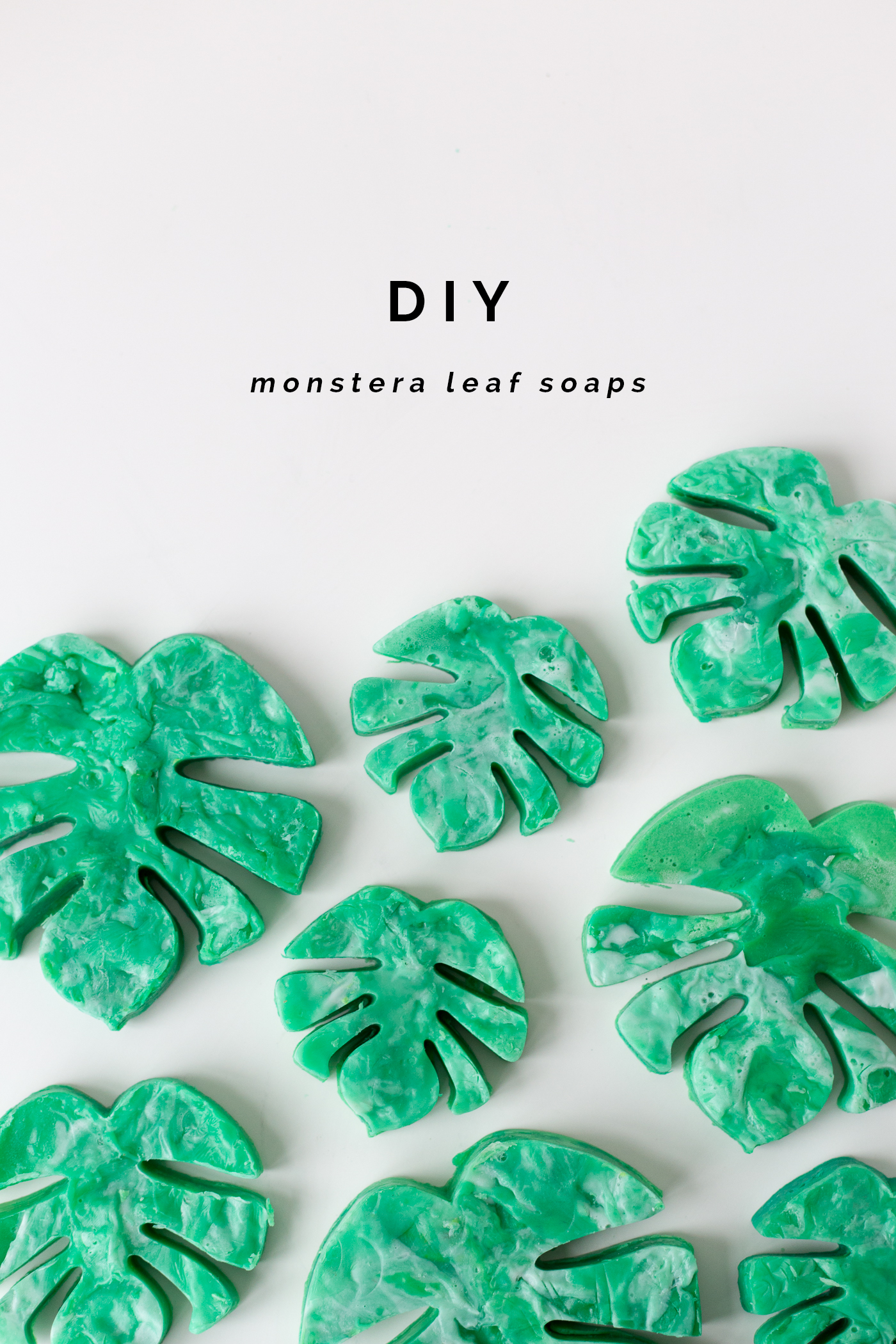 http://fallfordiy.com/wp-content/uploads/2016/12/DIY-Monstera-Swiss-Cheese-Leaf-Soaps-_-@fallfordiy.png