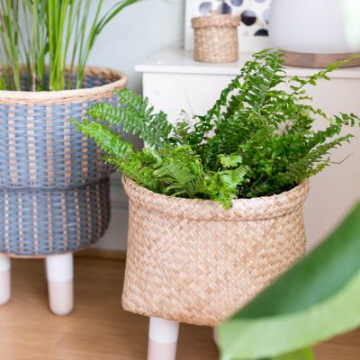 DIY Legged Basket Planter