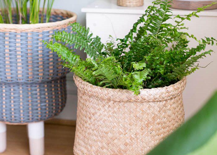 DIY Legged Basket Planter