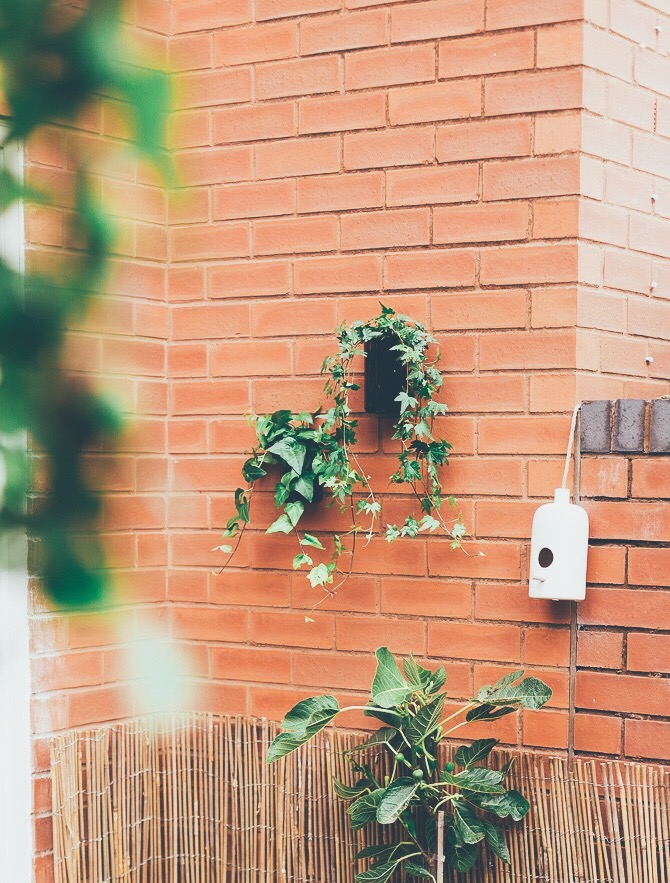 Upcycle These Planters In Minutes Diy Outdoor Wall Planters Fall For Diy