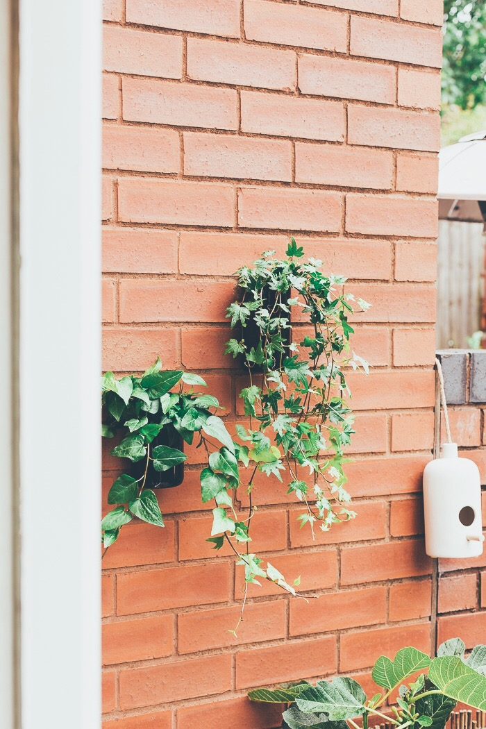 Upcycle these Planters in Minutes! DIY Outdoor Wall Planters | Fall