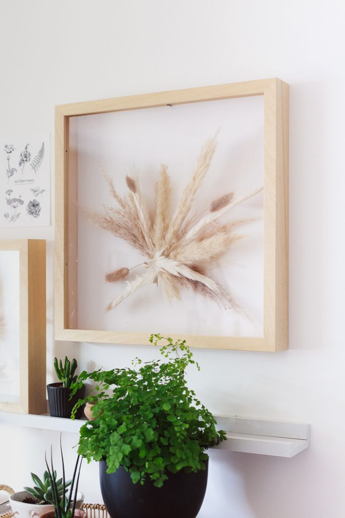 DIY Dried Glasses Suspended Framed Art